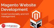 Customizable & Effective Magento Development